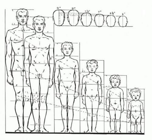объ¤снени¤ как рисовать тело человека